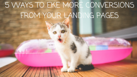 5 Non-Obvious Ways to Eke More Conversions from Your Landing Pages