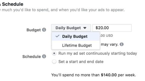 Facebook Ads Daily vs. Lifetime Budgets: Pros & Cons